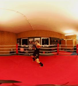 Oder der Boxer?